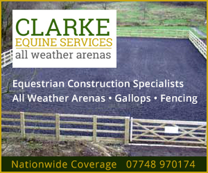 Clarke Equine Services 2020 (Staffordshire Horse)