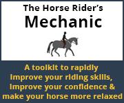 The Horse Rider's Mechanic 01 (Staffordshire Horse)