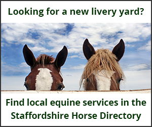 Livery Yards (Staffordshire Horse)