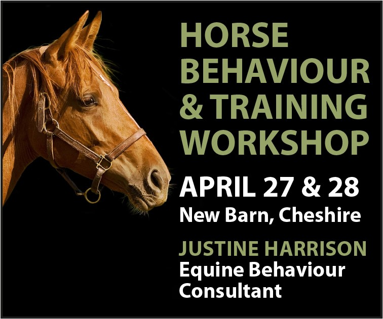 Justine Harrison Workshop April 2019 (Staffordshire Horse)