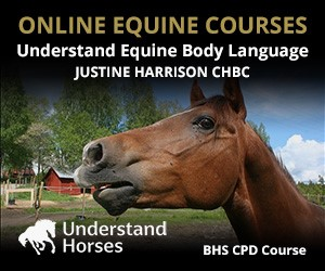 UH - Understand Equine Body Language (Staffordshire Horse)