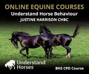 UH - Understand Horse Behaviour (Staffordshire Horse)